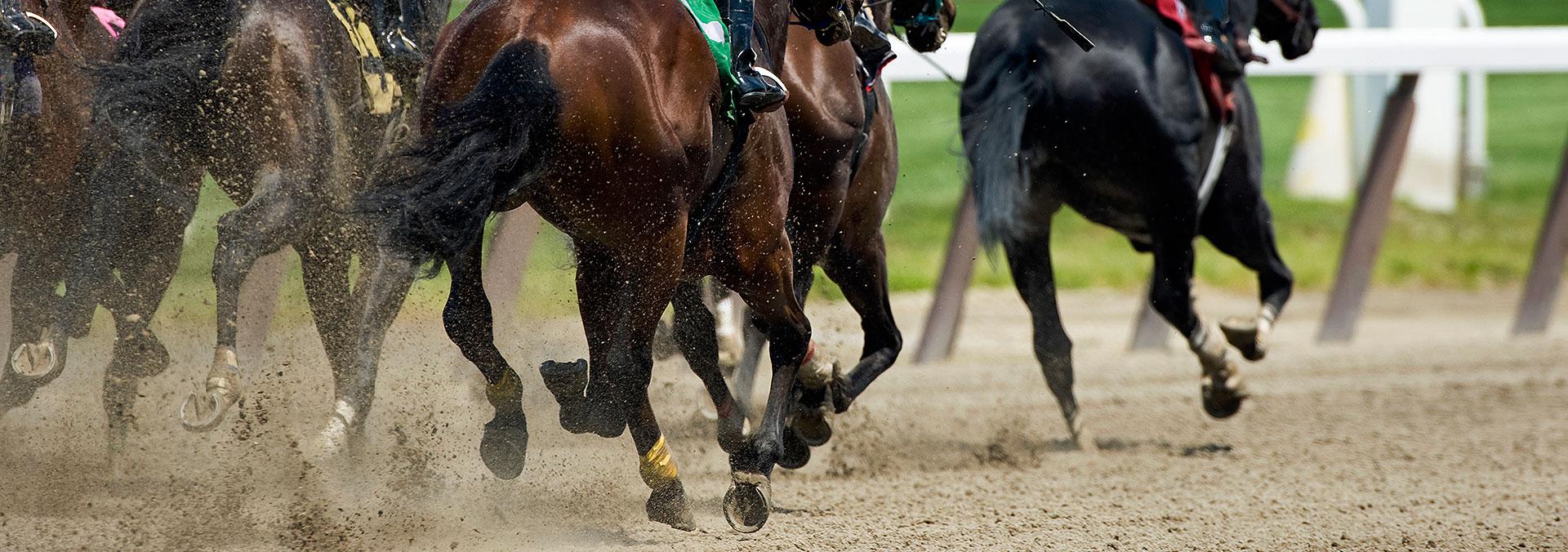 Sunland Park Race Track & Casino Paso Del Norte